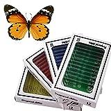 子ども向け科学教育玩具 全48種類 動物昆虫植物花のプラスチック製プレパラートセット 蝶の実物の標本一頭