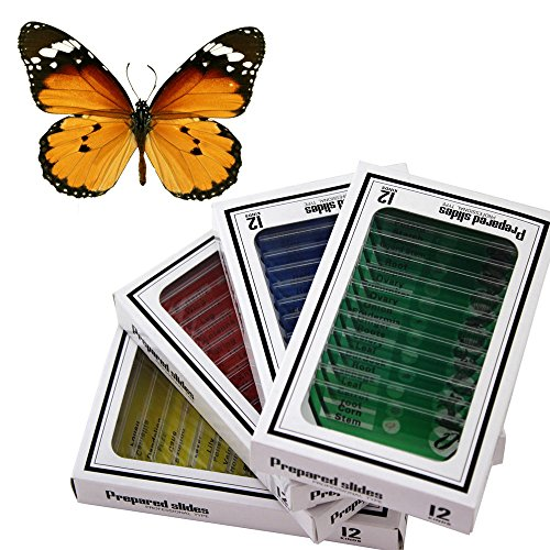 WhizKidsLab 48 Plastic Prepared Microscope Slides Kit Bonus Butterfly Specimen for Kids Student Science STEM Education