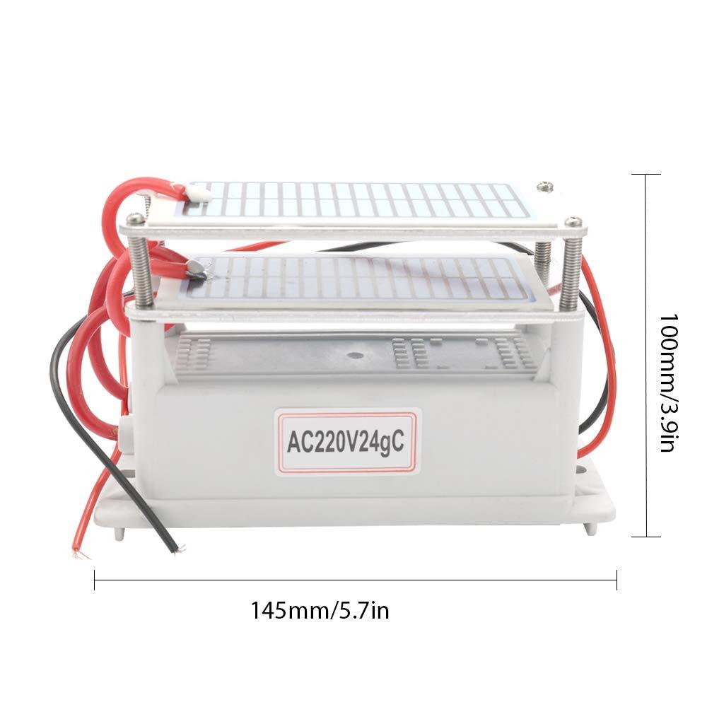 Fesjoy Generador de Ozono de Cerámica Portátil 220V 24g Larga vida ...
