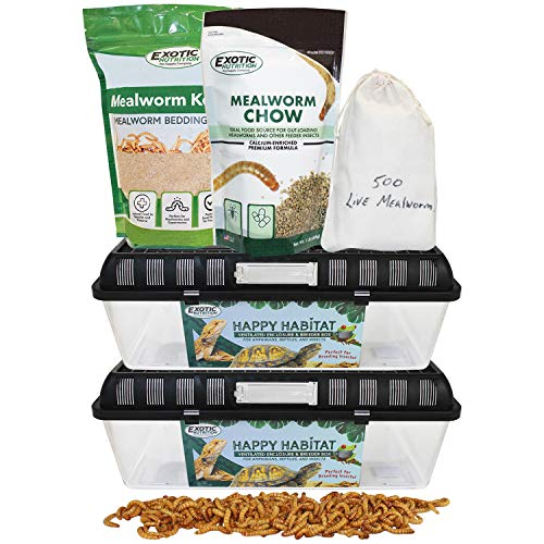 Mealworm Breeder Kit (Expanded) - Breed Live Feeder Worms for Hedgehogs, Sugar Gliders, Reptiles,...