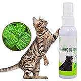RUIBUY Herbe à Chat en Spray Vaporisateur Cat Naturals Spray Chats,Vaporiser sur Jouets, Plumeaux, Griffoirs Arbres à Chat,50ml