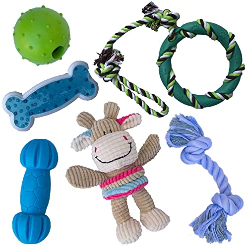 rocket & rex Dog Toy Pack, Chew Toys for Small Dogs and Dog Toys for Puppies, Safe & Non-Toxic, for Small to Medium Breeds, Includes Rope Toys, Plush Squeaky Toy, Ball and Tug of War Toy