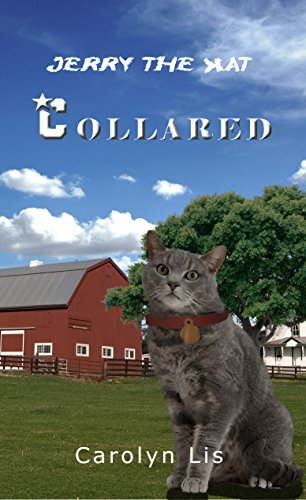 Collared: Jerry the Kat (English Edition)