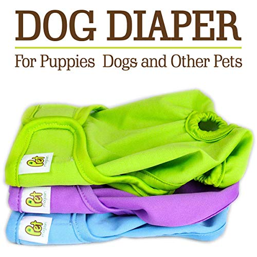 Pet Magasin Reusable Dog Diapers, Extra Small, Pack of 3