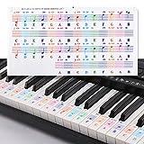 Pinsheng Pegatinas para Teclados 25/49/61/76/88, Pegatinas para Pianos o Teclados con Letras Grandes...