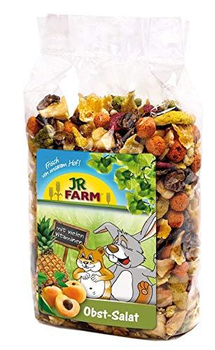 JR Farm Obst-Salat 200g