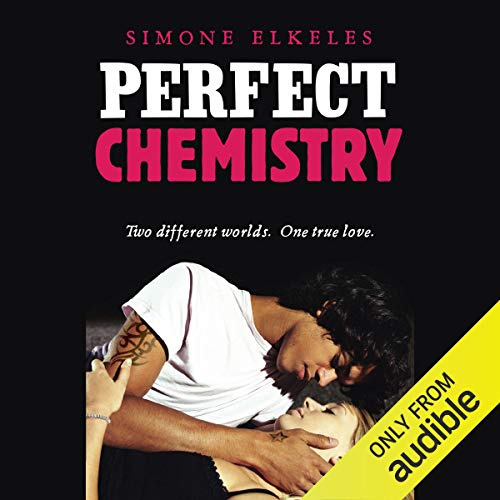 Perfect Chemistry  By  cover art