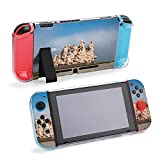 SUPNON Penglai City, Shandong Province, Penglai Protective Case Compatible with Nintendo Switch Soft Slim Grip Cover Shell for Console & Joy-Con with Screen Protector, Thumb Grips Design36169