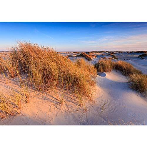 Liwwing, carta da parati in tessuto non tessuto di altissima qualità con motivo estivo e ambientazione in spiaggia con le palme, Beautiful Dunes, Fototapete 350x245cm | PREMIUM PLUS
