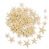 Coitak 100PCS Small Starfish Star Sea Shell Beach Crafts Decor, 0.4