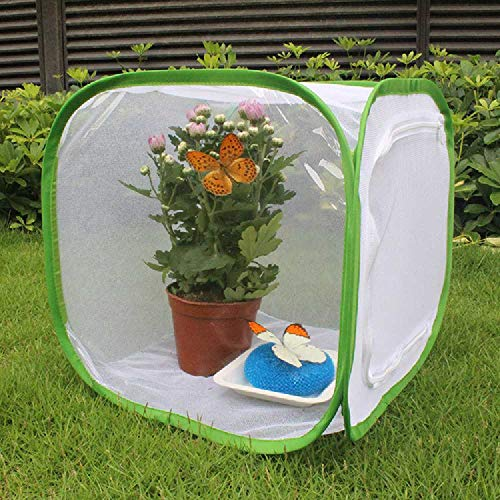 SLW dans La Section Breeding Cage Butterfly Habitat Cage with Clear PVC Film Collapsible Light - Transfing Pop-up White in Section and Butterfly Net Plant Green House Tent 40x40x60
