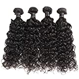 BeautyGirl Hair Brazilian Water Wave 4 Bundles 14 16 18 20inches 290g Unprocessed Water Wave Curly Human Hair Weave Brazilian Virgin Water Wave Hair Bundles Natural Black Color