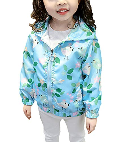 Baby Unisex Toddler Boys Pocket Zip Kids Mesh Lined Hooded Coat Autumn/Winter New Outfit 6-7 Years Leaves Blue