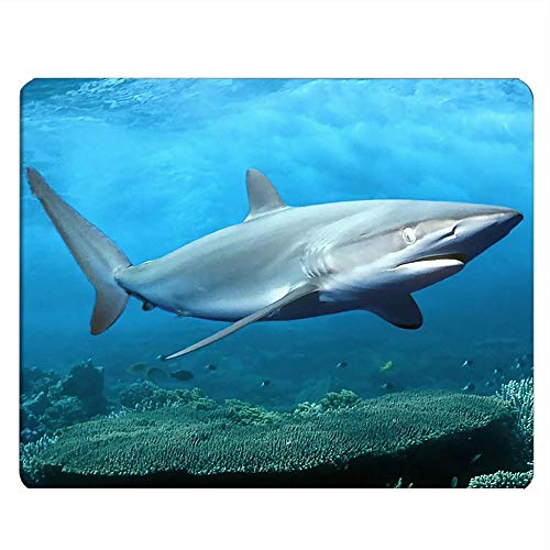 Nicokee Shark Gaming Mousepad Big Great White Shark Deep Ocean Mouse Pad Mouse Mat for Computer Desk Laptop Office 9.5 X 7.9 Inch Non-Slip Rubber