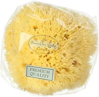 Hydrea London Natural Honeycomb Sea Sponge 4.5 - 5