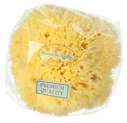 Hydrea London - Eponge naturelle en nid d'abeille - 11,5-12,5 cm de largeur