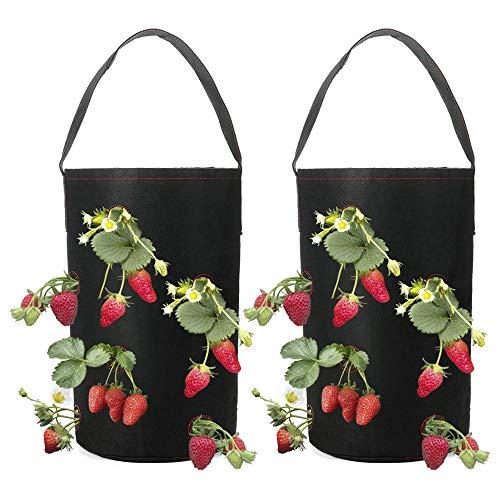 LouisaYork Erdbeer-Tasche, 2er-Pack, zum Aufhängen von Erdbeeren, Pflanztaschen mit Tasche, Pflanzentopf für Erdbeeren, Stoff-Blumentöpfe für Tomaten/Kräuter/Blumen/Erdbeeren, Filz, Schwarz , 38*22