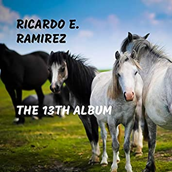 The 13th Album