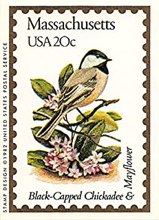 Massachusetts State Bird & Flower trading card (Black-Capped Chickadee & Mayflower) 1991 Bon Air #21