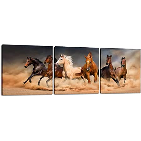 Glass Picture Wall Pictures Print on Glass 140x70 Decorative Animals Horses in the Desert