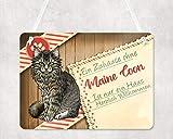 Warnschilder für Katzen, Türschild mit Maine Coon Katze, UV-geschützte Eingangsschilder, Wetterfest, Größe 20x28cm, wird mit einem Seil zum Aufhängen geliefert