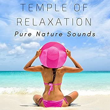 Temple of Relaxation: Gentle Instrumental Music, Pure Nature Sounds, Soothing Sounds, Relaxation