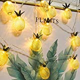 2 Packs Pineapple LED String Lights 16ft 20 LED Battery Operated Fairy String Lights for Valentine's Day Party Indoor Bedroom Decoration Whonline (Warm White)