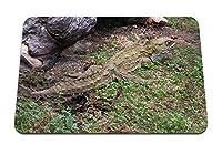 22cmx18cm マウスパッド (ツクシガモ爬虫類大型クロール) パターンカスタムの マウスパッド