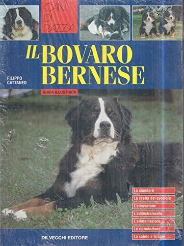 Il bovaro bernese