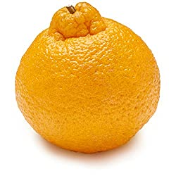 Sumo Mandarin, One Medium
