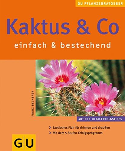 Kaktus & Co. : einfach & bestechend
