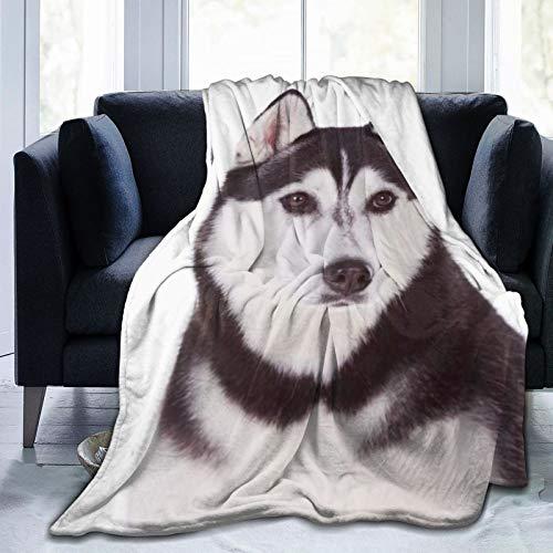 ELIENONO Manta De Tiro De Lana Suave,Siberiano Adorable Husky Aislado Obediencia Perro...