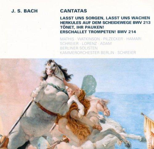 Tonet, ihr Pauken! Erschallet, Trompeten!, BWV 214: Recitative: So dringe in das weite Erdenrund (Bass)