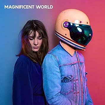 Magnificent World