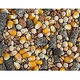 Karpfenhans Partikelmix Super Karpfen Partikel mit Melasse 5 kg Karpfenangeln