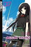 Accel World - Novel 07