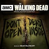 Theme from the Walking Dead