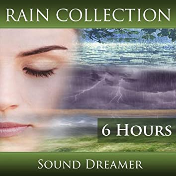 Rain Collection (6 Hours)