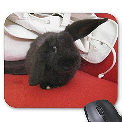 Yanteng Mouse pad gaming mouse mousepad Lovely Rabbit Mousepad Serie Black Rabbit in Red Sofa Mouse Pad Bunny Coniglio Mouse Pad Rettangolo Tappetini per il mouse