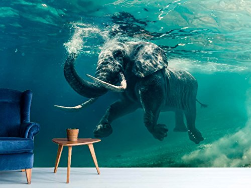 Fotomural Vinilo para Pared Elefantes   Fotomural para Paredes   Mural  ...