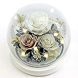 Forever Flowers - Rosas preservadas para mujer, mamá, novia, esposa, rosas frescas y auténticas, regalo elegante para el día de San Valentín, cumpleaños, aniversario (blanco perla)