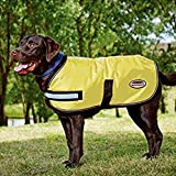 Weatherbeeta Reflective Dog Rug (Dog Coat)-Yellow 30cm