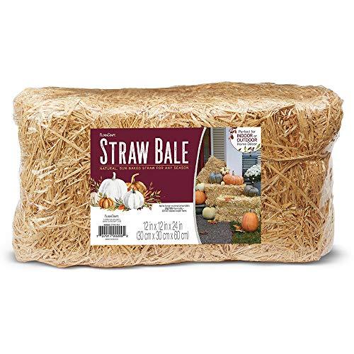 FloraCraft Straw Bale 12 Inch x 12 Inch x 24 Inch Natural
