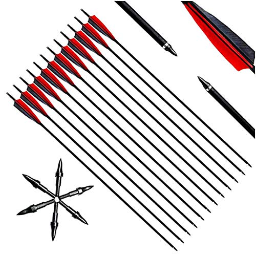 YC° Archey mezcló Flechas de Carbono, Practicar 30 Pulgadas dirigidas a Flechas de Plumas Naturales Reales con Puntas Removibles para el Arco Compuesto y recurvado (Paquete de 12)