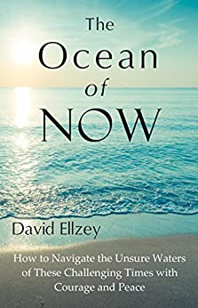 The Ocean of Now by [David Ellzey]