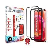 2 Pezzi Vetro Temperato Compatibile con iPhone 12 Mini,3D Curva Full Screen Pellicola Protettiva