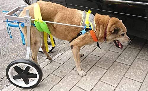 "Adjustable Dog Pet Wheelchair, Hind Legs Rehabilitation, 7 Sizes (0-100lbs), Dog Cart,Wheels (L: Hip Height 20-24"", Weight 44-110lbs)"
