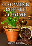 Growing coffee at home: DIY growing coffee in Container