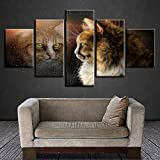 RoYderWick Decoración de la Pared de la habitación Imágenes de la Lona Obra de Arte 5 Piezas Gatos encantadores Animales y su Sombra Cartel Arte HD Impresiones Marco Pinturas Modular