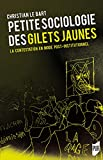Petite sociologie des Gilets jaunes - La contestation en mode post-institutionnel